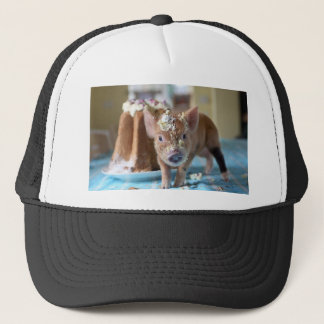 Funny pig and  the cake trucker hat