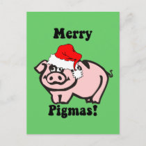 Funny pig Christmas Holiday Postcard