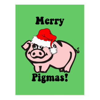 Funny pig Christmas Post Card