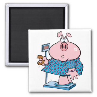 funny pig on a diet eating a donut on a scale 2 inch square magnet