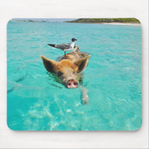 Funny Pig Swimming Mouse Pad