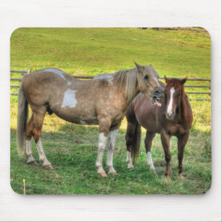 Funny Pinto Stallion & Sorrel Mare Horse Friends 2 Mouse Pad