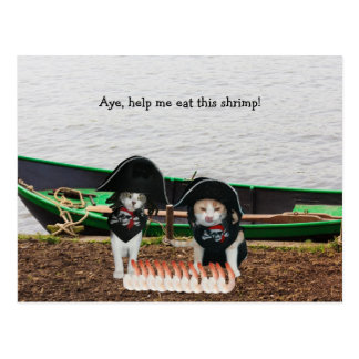 Funny Pirate Cats Postcard
