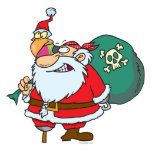 funny pirate santa and xmas parrot cartoon photo cut outs