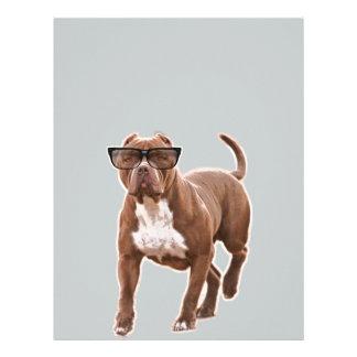 Funny pit bull in glasses letterhead