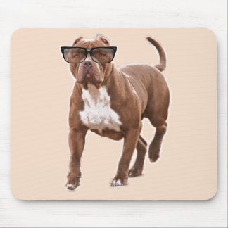 Funny pit bull in glasses mouse pad