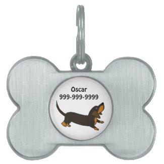 Funny Playful Dachshund Dog
