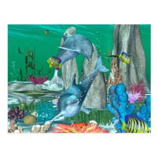 Funny playing dolphins with other fish postcard