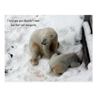 Funny polar bears postcard