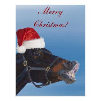 Funny Pony Merry Christmas Postcard
