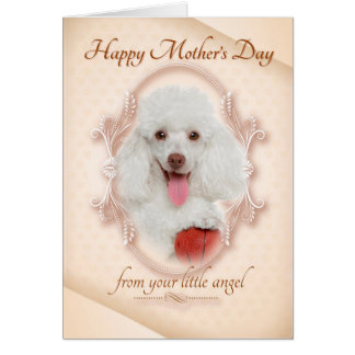 Funny Poodle Mother's Day Card
