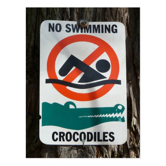 Funny Pool or Swimming Hole Sign Postcard