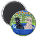 Funny Pool Party Labradors Magnets