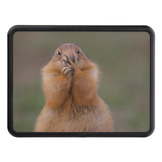 funny prairie dog trailer hitch cover
