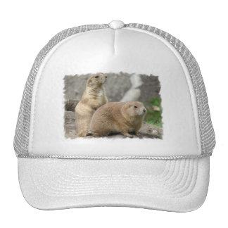 Funny Prairie Dogs Baseball Hat