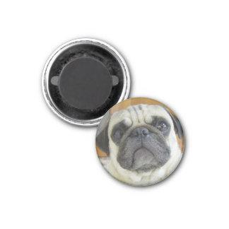 Funny Pug Face Refrigerator Magnet Fridge Magnets