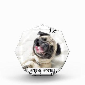 funny pug insanity acrylic award