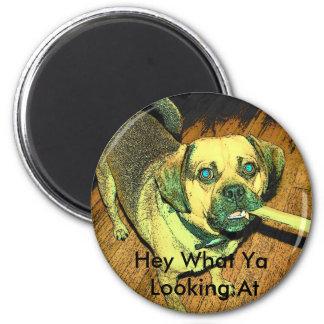 Funny Puggle Dog Refrigerator Magnet