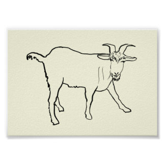 Funny quizzical goat novelty art poster