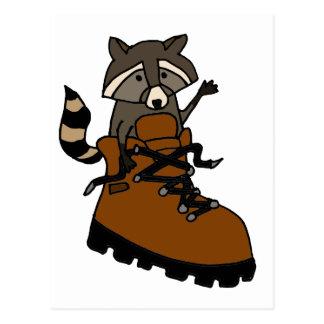 Funny Raccoon in Hiking Boot Postcard