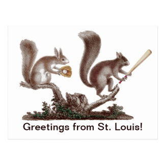 Funny Rally Squirrel Greetings from St. Louis! Postcard