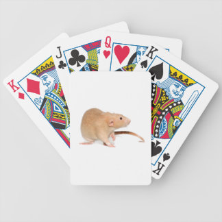 Funny red rat. bicycle playing cards