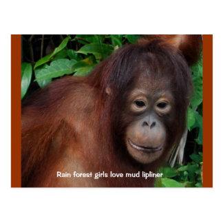 Funny Redhead Jungle Girl Beauty Advice 1 Post Cards