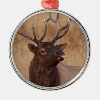 funny reindeer metal ornament