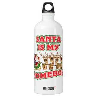 Funny Santa Is My Homeboy Christmas Aluminum Water Bottle