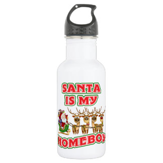 Funny Santa Is My Homeboy Christmas Stainless Steel Water Bottle