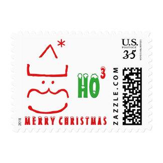 Funny Santa Merry Christmas Holiday Postage Stamp