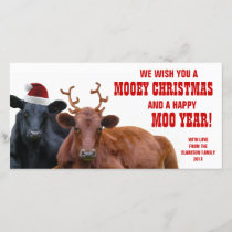Funny Santa Reindeer Cows Christmas Beef Farm Holiday Card