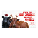 Funny Santa Reindeer Cows Christmas Beef Farm Picture Card