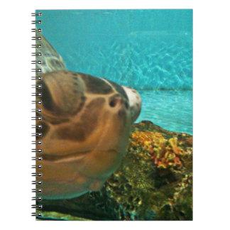 Funny Sea Turtle Peek Notebook