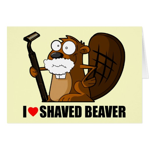 Funny shaved beaver greeting cards