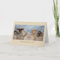 Funny Sheep greeting card