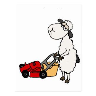Funny Sheep Mowing Grass Cartoon Postcard
