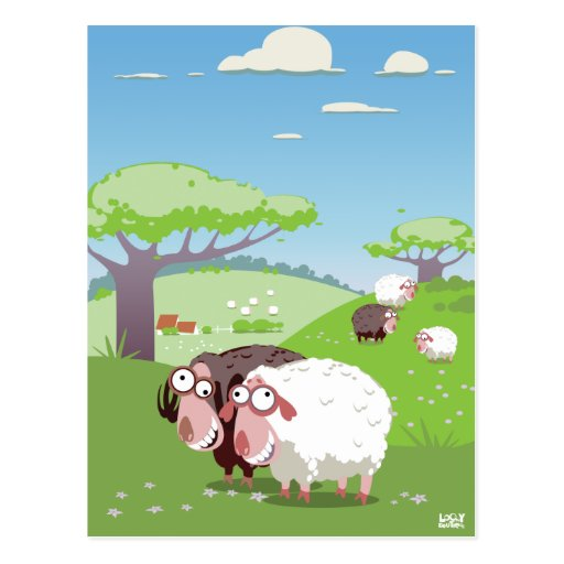 Funny Sheep Post Cards