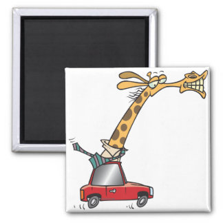 funny silly giraffe in a car commuting magnet