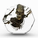 Funny Skeleton Acrylic Award