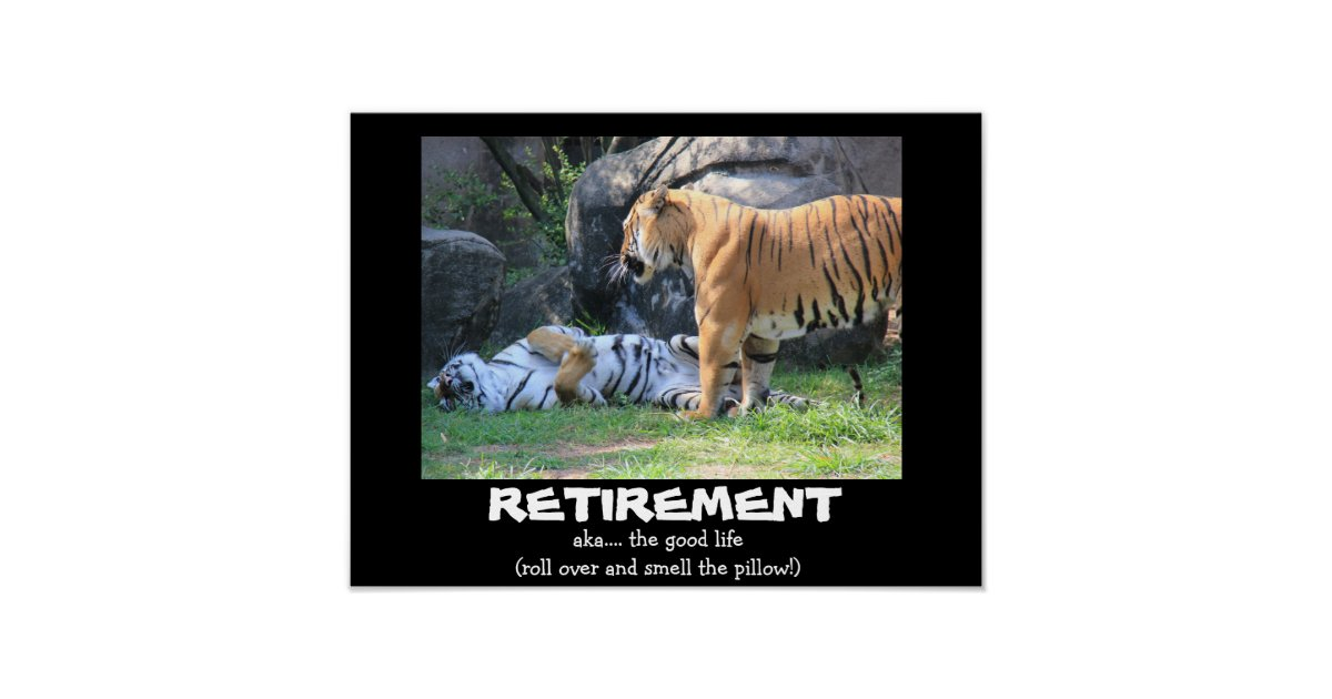 Funny Sleeping Tiger 16x12 Retirement Poster Zazzle