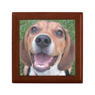 Funny Smiley Face Beagle Gift Box