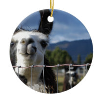 Funny Smiling Llama in Southern Oregon Ceramic Ornament