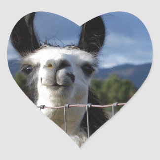 Funny Smiling Llama in Southern Oregon Heart Sticker