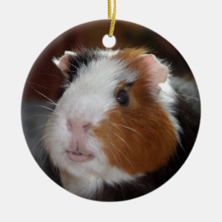 Funny, Smooth, Tricolor Guinea Pig Face Double-Sided Ceramic Round Christmas Ornament