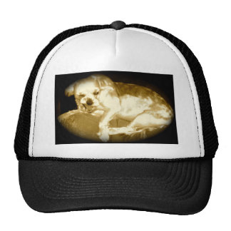 Funny Snarly Dog.jpg Trucker Hat