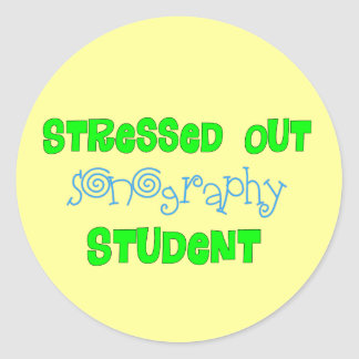 Funny Songraphy Student Gifts Classic Round Sticker