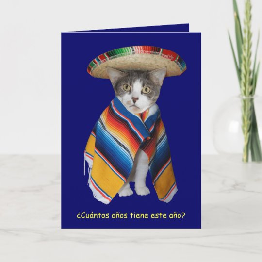 Funny Spanish Catkitty Birthday Card Zazzle