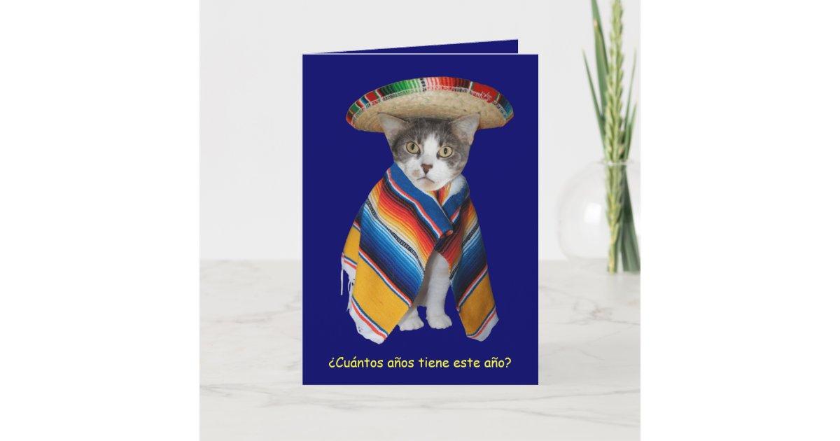 Funny Spanish Catkitty Birthday Card Zazzle