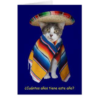 Funny Spanish Cat/Kitty Birthday Greeting Card